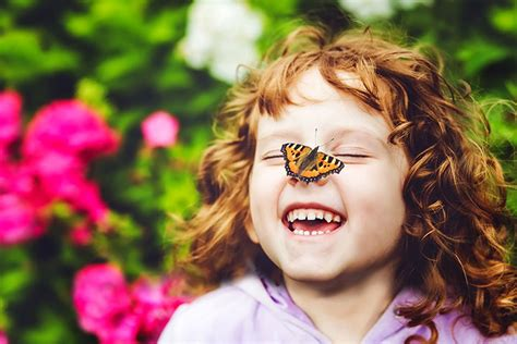 15 Amazing Butterfly Facts For Kids