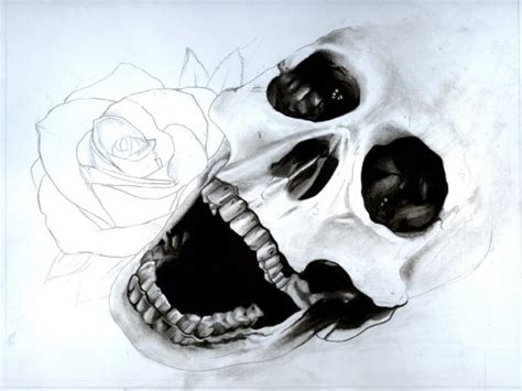 Draw a Skull and Rose with Pencils and Watercolours