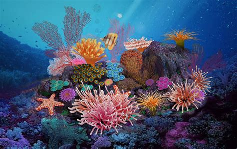 Science fiction - seabed - coral group 02 3D | CGTrader