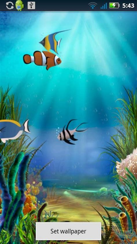 Download Fish Pond Wallpapers Free Gallery