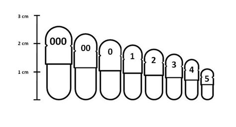 Types and Sizes of Capsule to Use in Fully Automatic