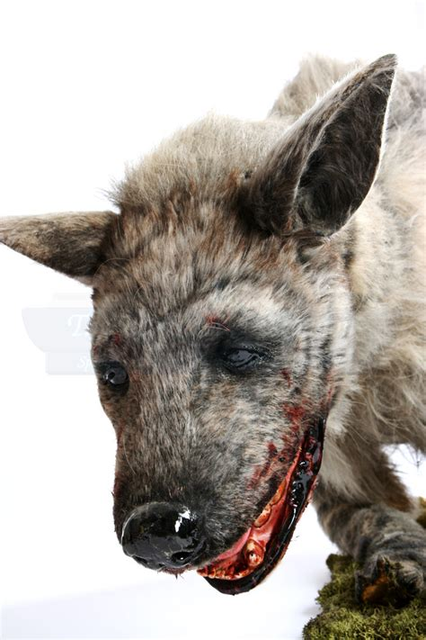 Bloody Hyena Puppet | Prop Store - Ultimate Movie Collectables