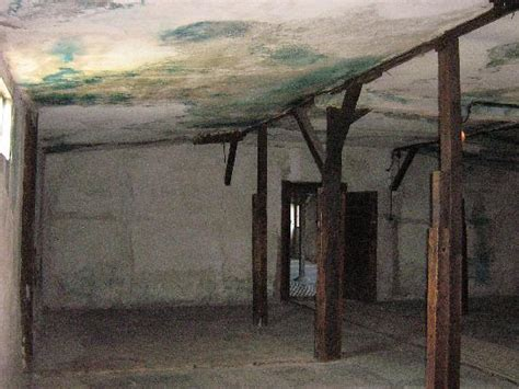 inside the gas chamber - Picture of Majdanek National