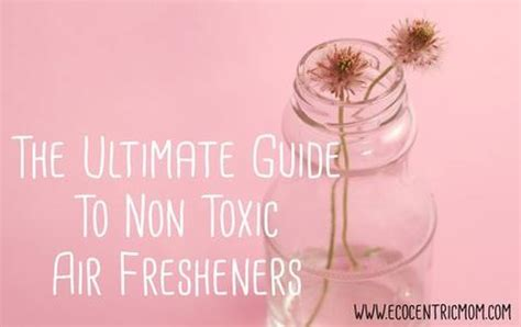 The Ultimate Guide to Non Toxic Air Fresheners