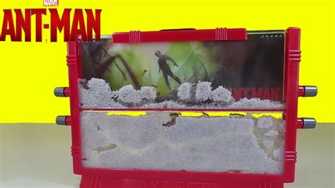 Marvel Ant-Man Ant Farm with Live Ants New Toy Surprise