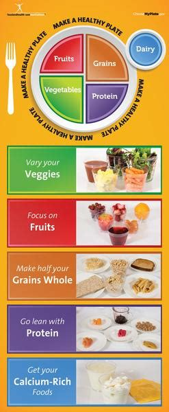 Adult MyPlate Brochure Cards - Packet of 25   $ 17
